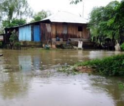 El agua ya casi llega a algunas viviendas ribereñas.