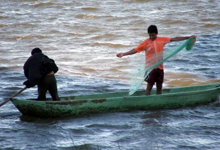 El Plecostomus rompe las redes de los pescadores y causa pérdidas económicas actualmente.