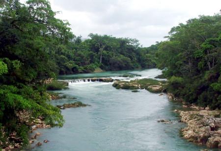 Guía del Viajero en México: Viaje al Río Tulijá, corazón tzeltal ...