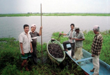 El plecostomus es lo unico que ahora sacan los pescadores deTabasco.