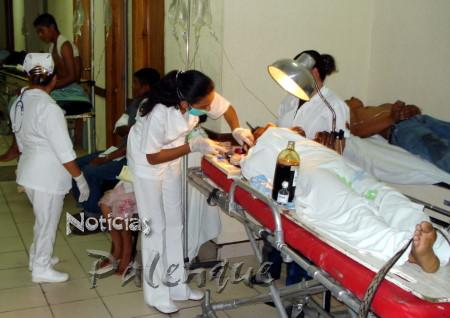 El Hospital Regional atendió a familia atacada por abejas.