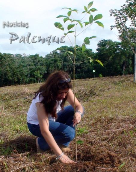 Junto a cada nuevo árbol, una esperanza de un mundo mejor.