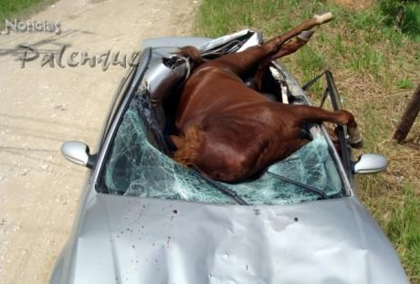 Todav�a no se explican como se salvaron los del auto.