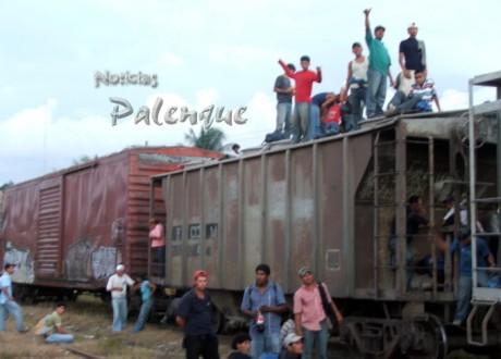 Son los indocumentados más pobres quienes viajan sobre el tren.