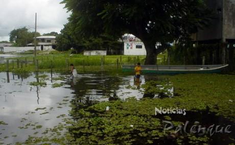 La laguna ya se metio a muchos predios asentados a la orilla