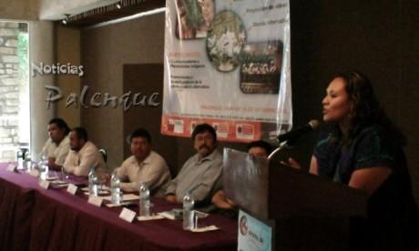 Lourdes López Moreno inauguró el foro con la representación del gobernador.