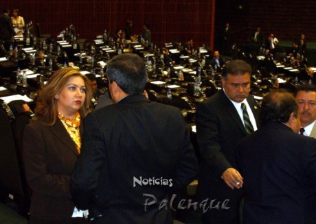 Yary durante la plenaria en la que se aprobó el presupuesto 2009.