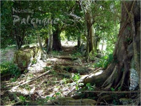 La ruta maya de Palenque-Santa Isabel.
