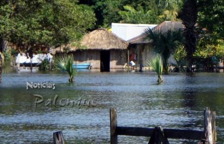 Son 214 las viviendas afectadas en 4 comunidades de Palenque.