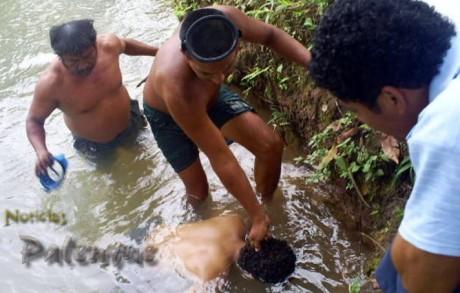 El cuerpo fue sacado del río y trasladado al Semefo.