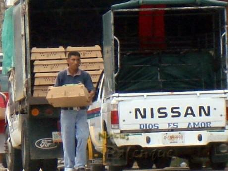 La inducción al voto mediante la entrega de pollitos y molinos.