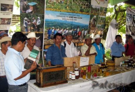 Apicultores de varios municipios expusieron sus productos.